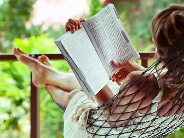 微风飞过蔷薇全文在线阅读小说新章节