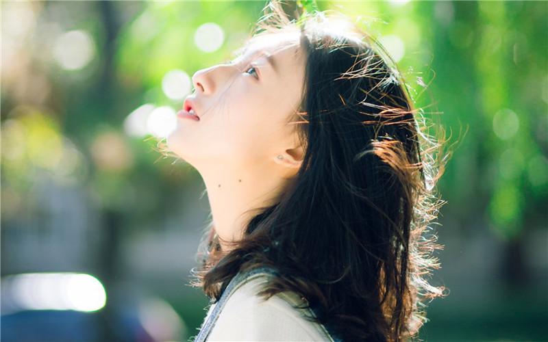 精品小说《微风飞过蔷薇》全章节免费在线阅读 微风飞过蔷薇免费阅读全文