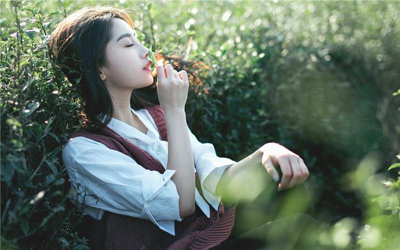 都市小说《微风飞过蔷薇》全文在线TXT免费阅读,微风飞过蔷薇小说大结局